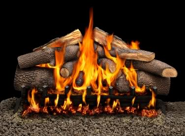 Gas fireplace logs.