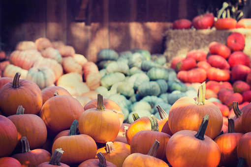October's pumpkin harvest signals time for gas systems maintenance.